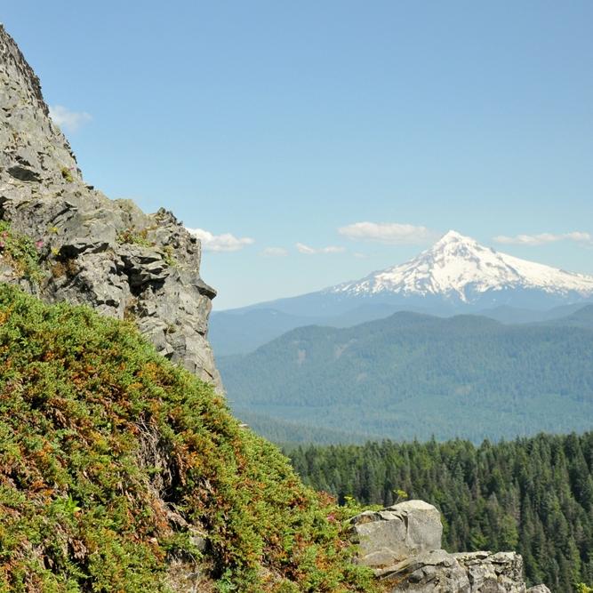 Larch Mountain, Aug 2011