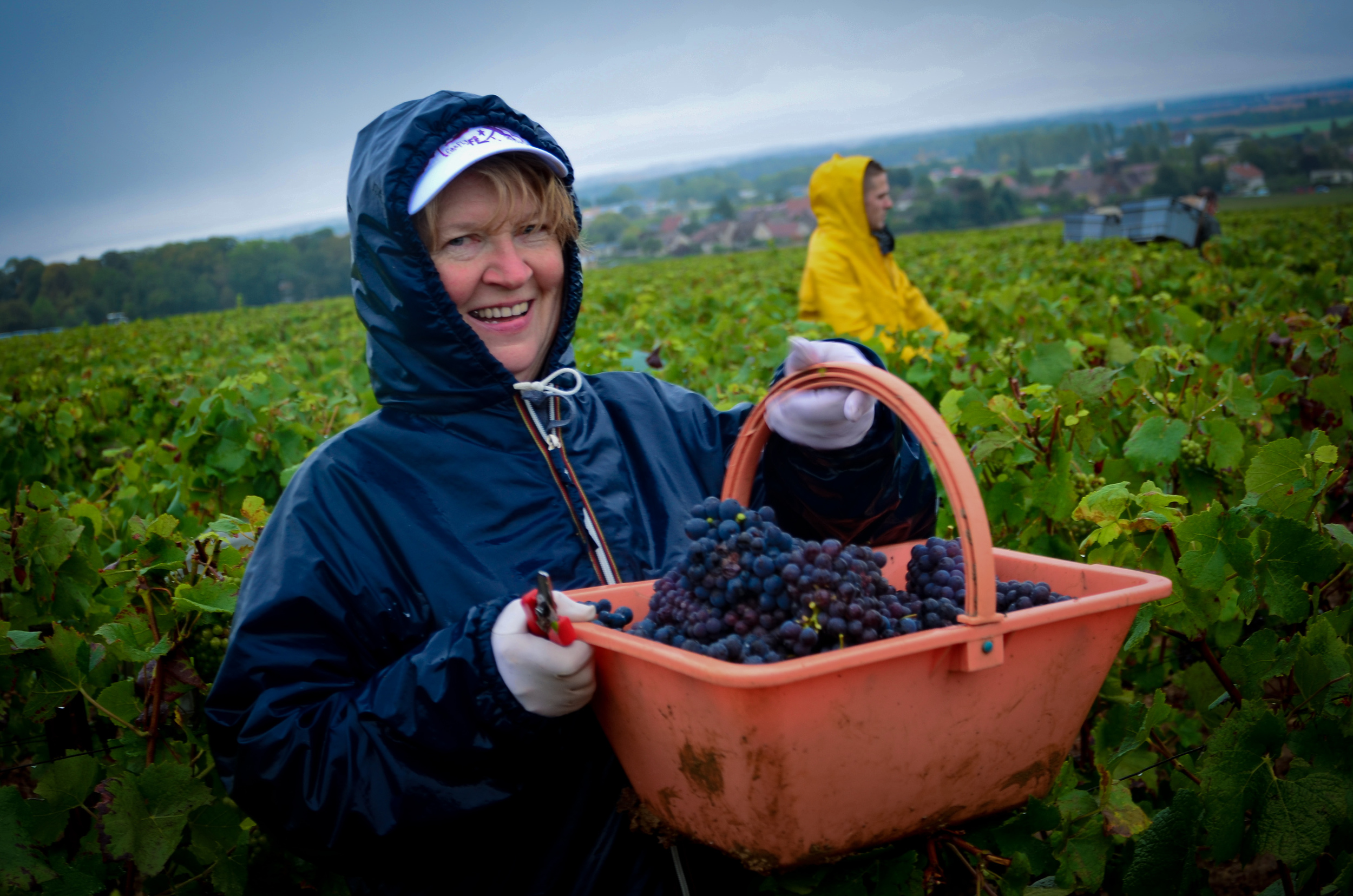 Hungry_Cyclist_Burgundy_Harvest12-9.jpg