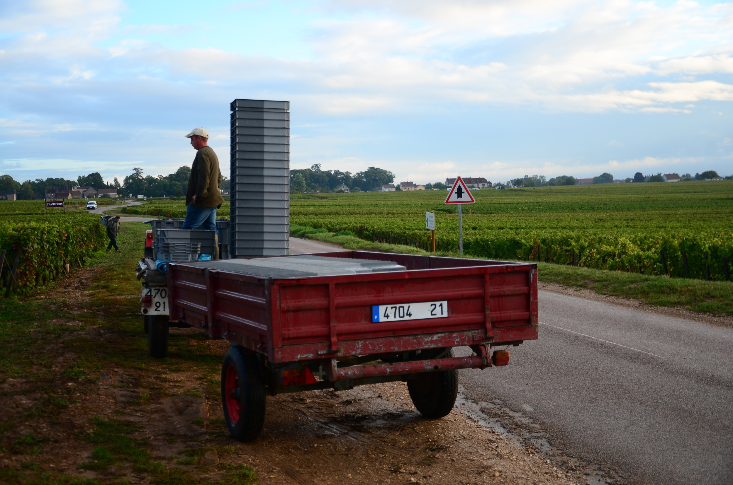 Hungry_Cyclist_Burgundy_Harvest12-63.jpg