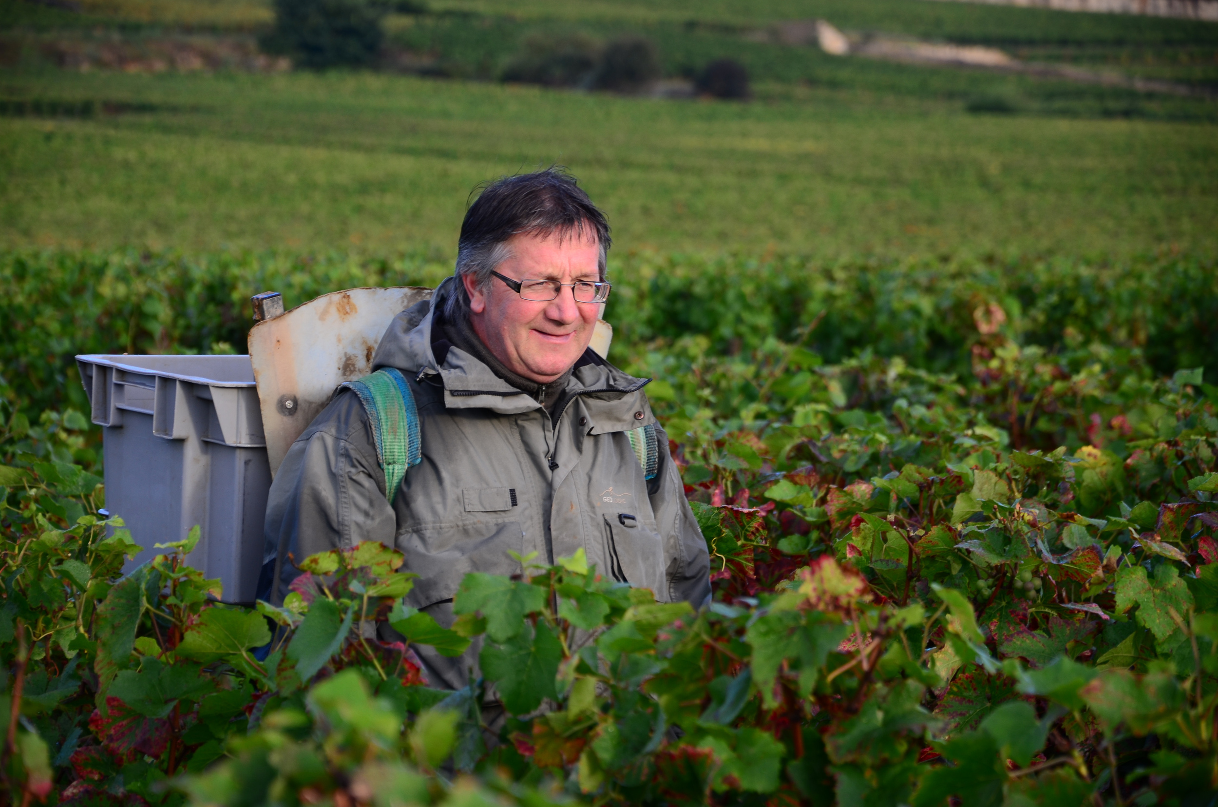 Hungry_Cyclist_Burgundy_Harvest12-67.jpg