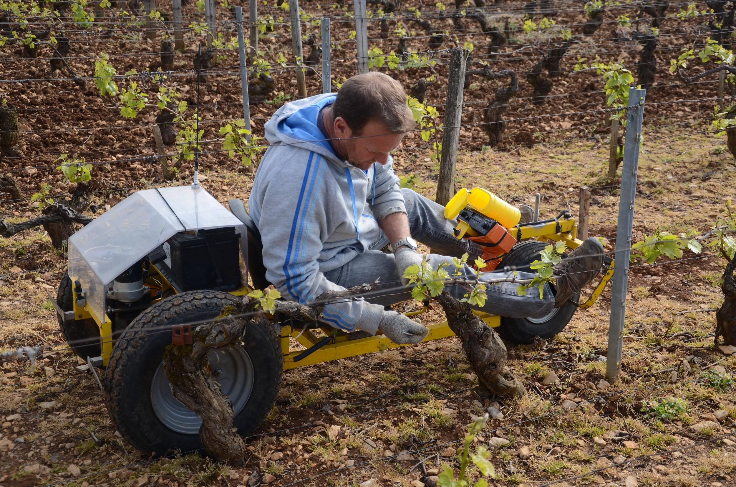 Burgundy11-15.jpg