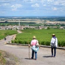 Hiking In Burgundy