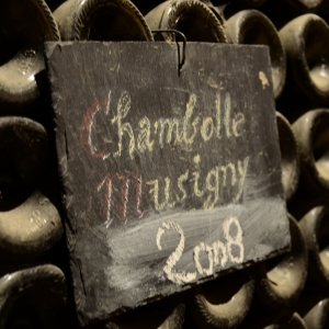 Cellar visits on a Hungry Cyclist Wine holiday