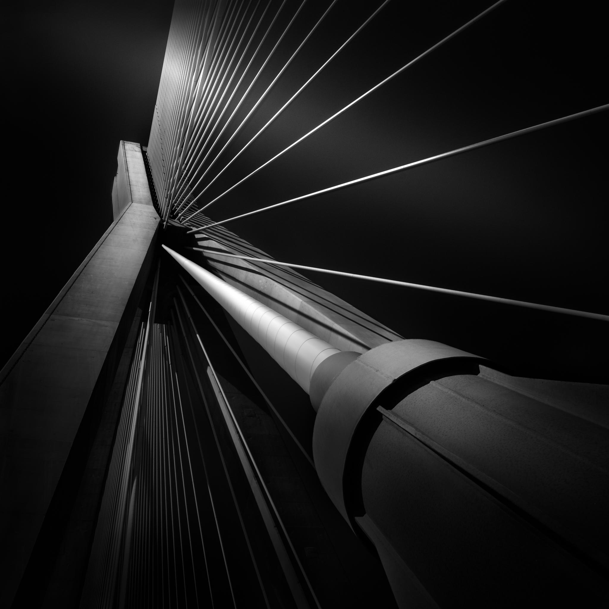 Julia Anna Gospodarou_03-Exuberance of Strings.jpg