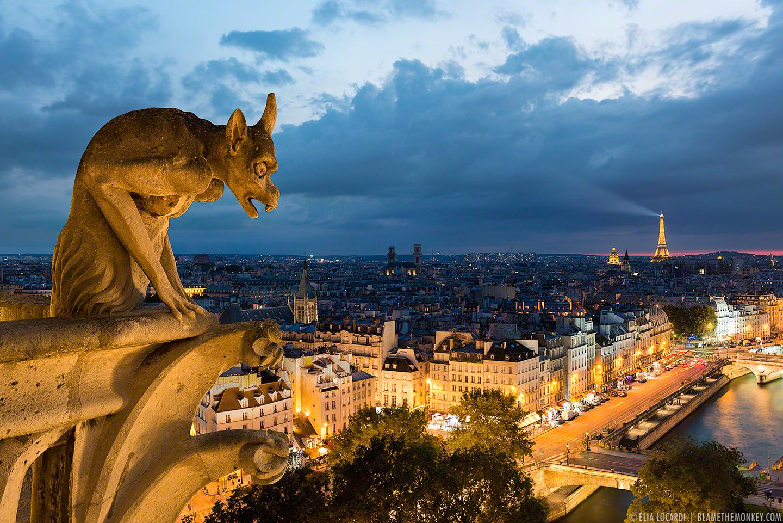 Elia-Locardi-Travel-Photography-Stone-Guardian-Paris-France-1440-DM-WM-sRGB.jpg