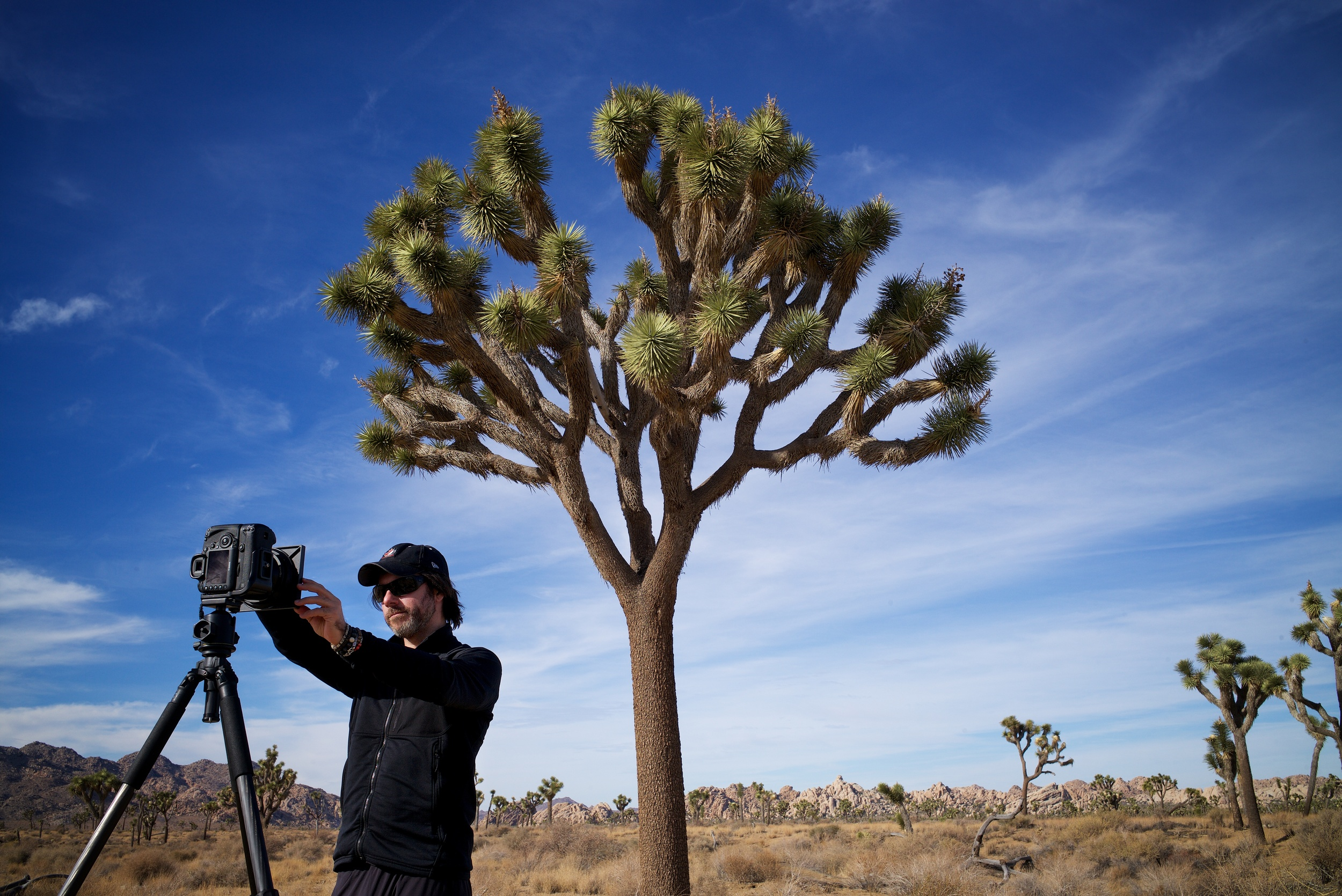 Signature Edition artist Ken Kaminesky in Joshua Tree ©Rod Clark