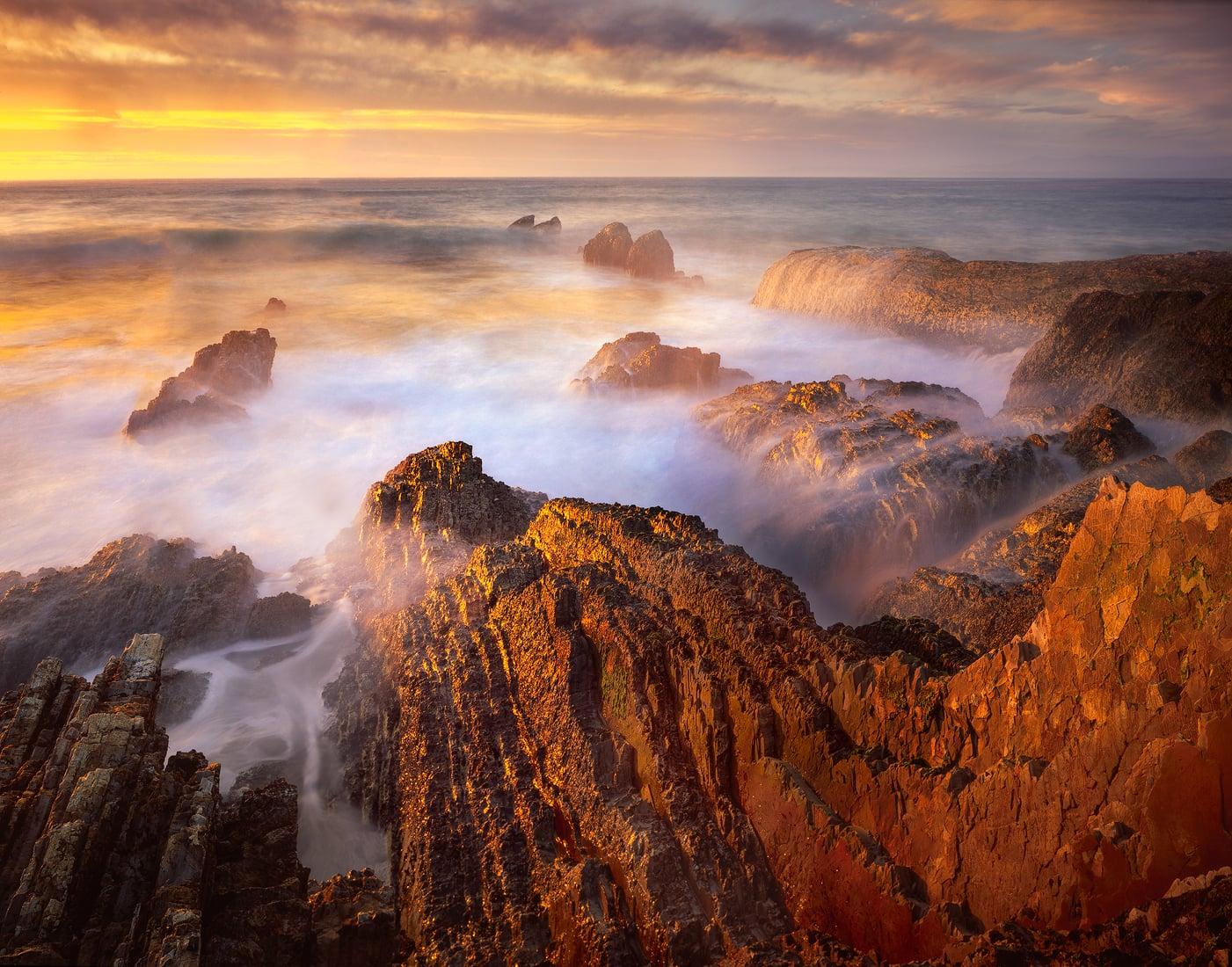 Sea+of+Gold.jpg