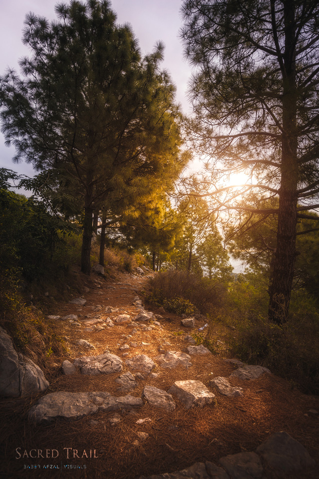 Sacred_Trail.jpg