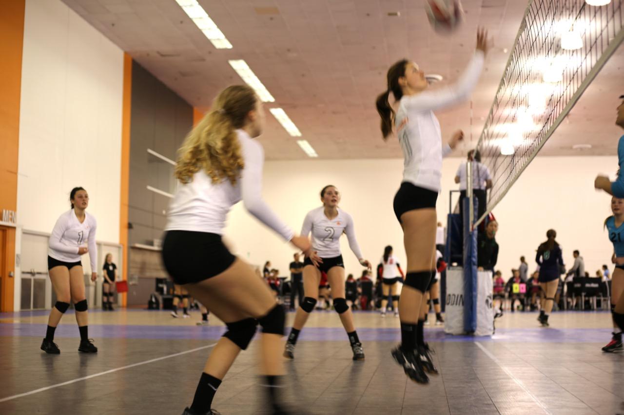 Verlander.Volley.Valentines - 29.jpg
