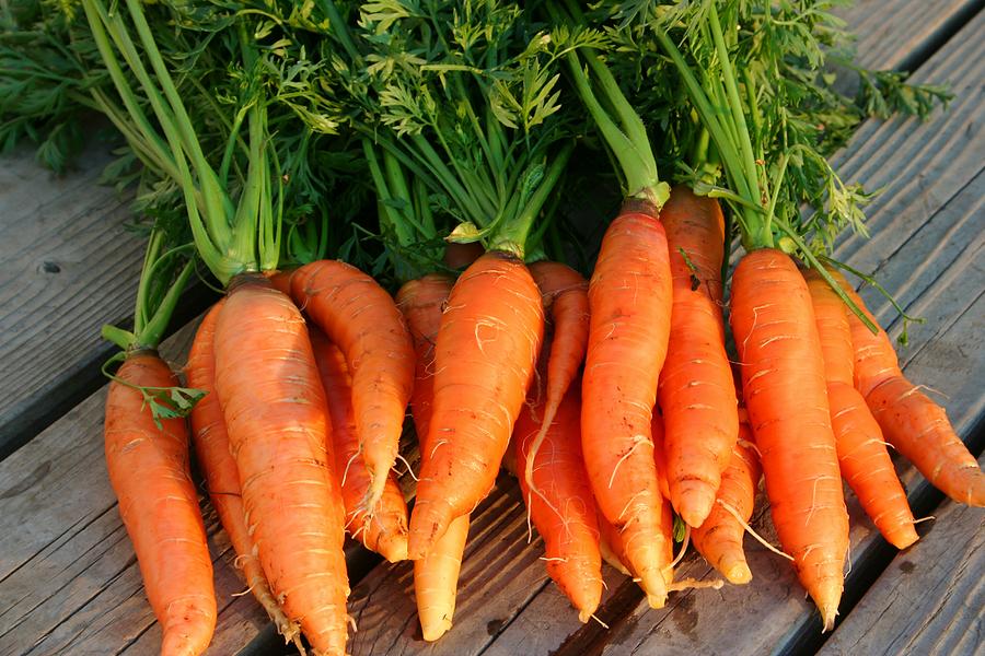 Carrots-Nantes1.jpg