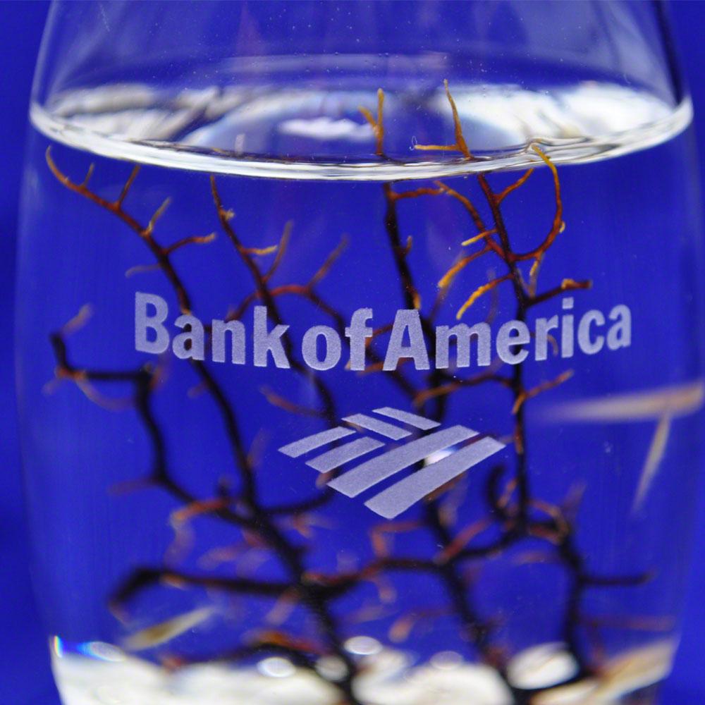 bank-of-america-sp-detail-ww.jpg