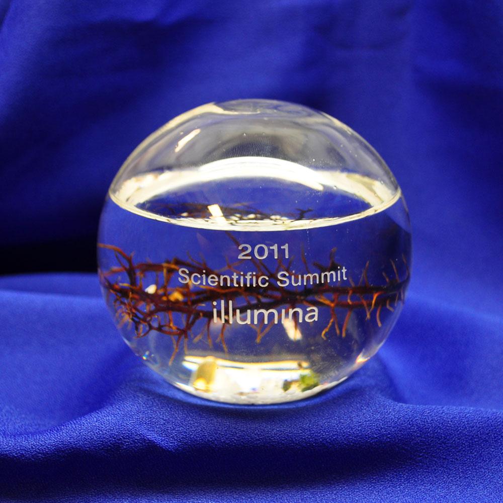 illumina-small-sphere-ww.jpg