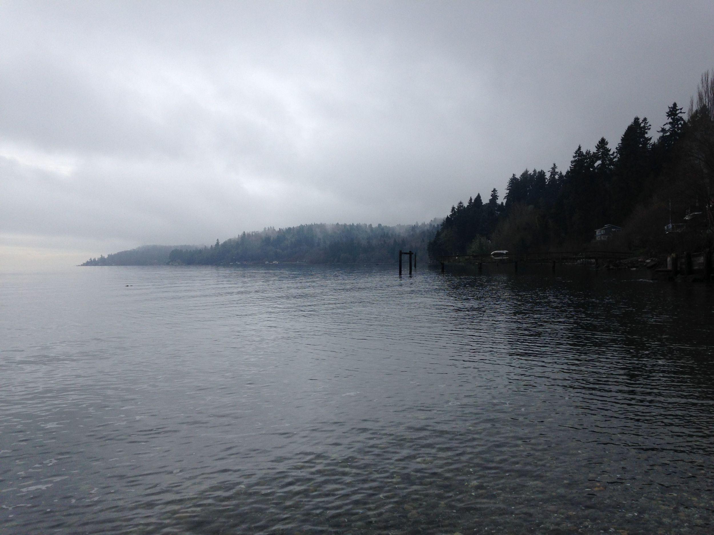 January fog2.jpg