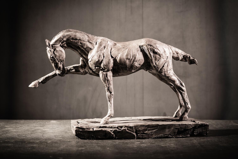 Focus  l  Bronze  l  12x18x5  l  $4,000
