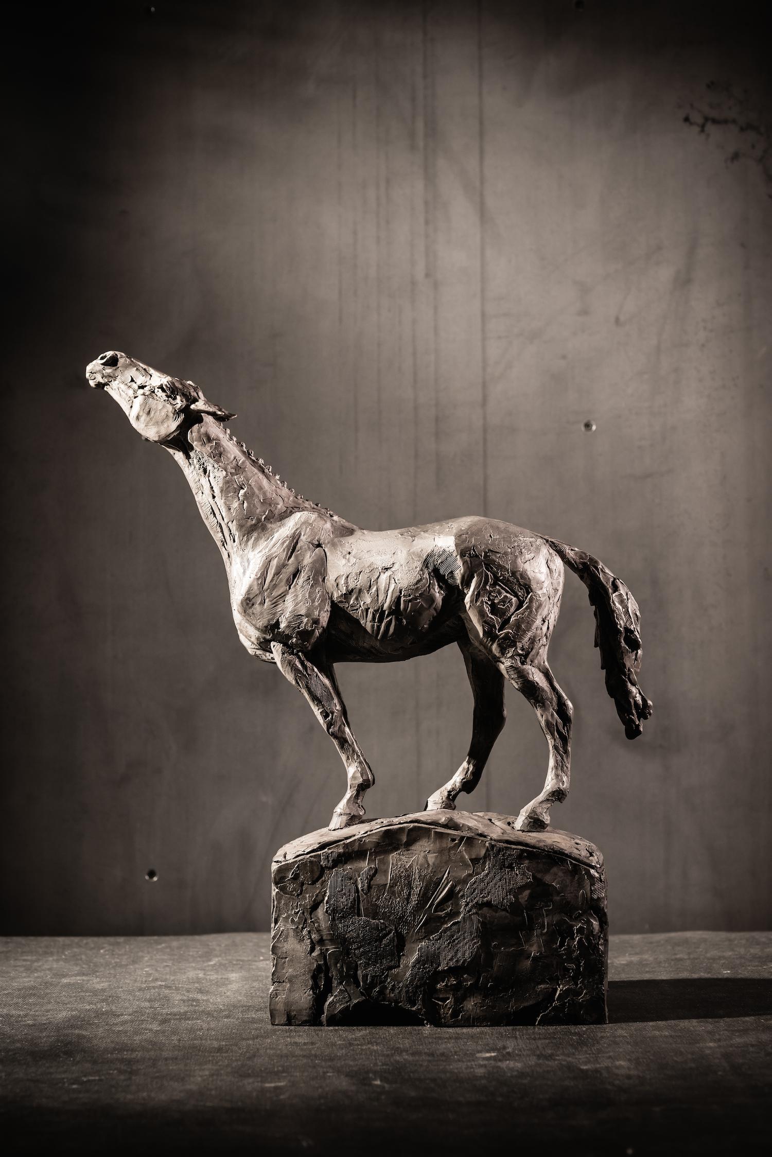 Search  l  Bronze  l  18x12x5  l  $4,000