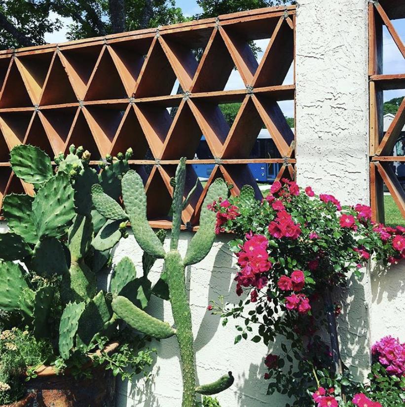 Terracotta breeze block with opuntias and bougainvillias at Matt's El Rancho.