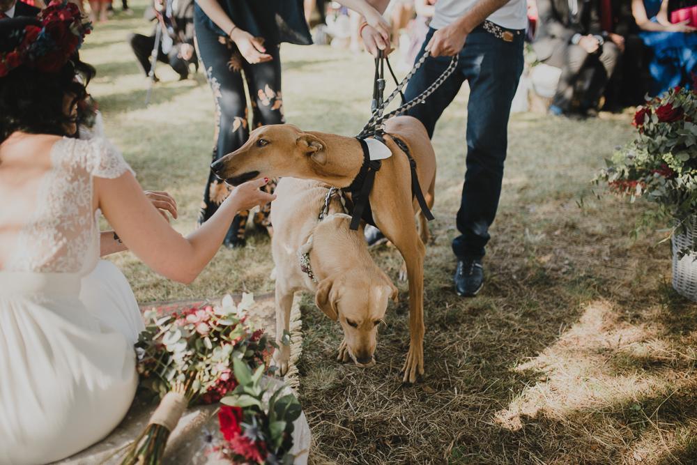 fotografo de bodas Serafin Castillo_-82.jpg