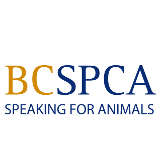 bcspca-footer-logo.png