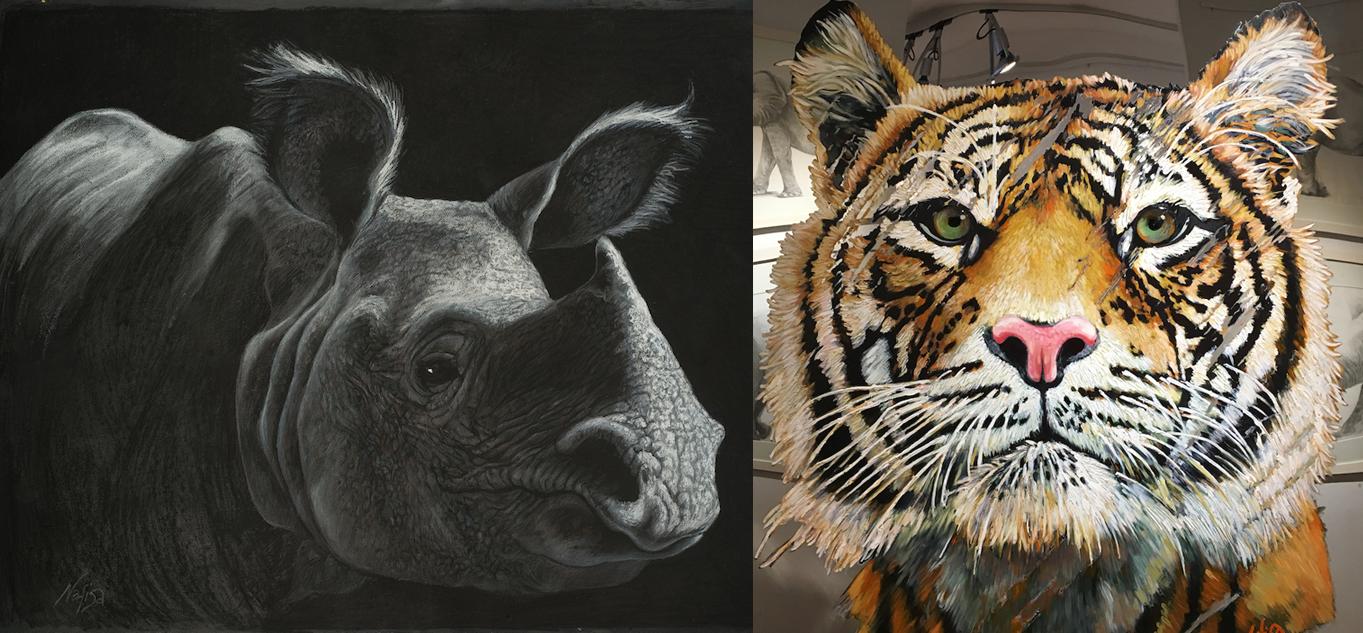 rhino-tiger.png