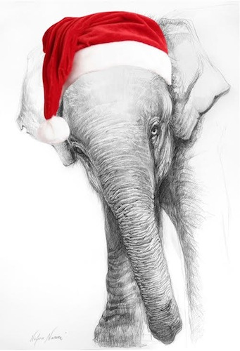 christmas-card-ele.jpg