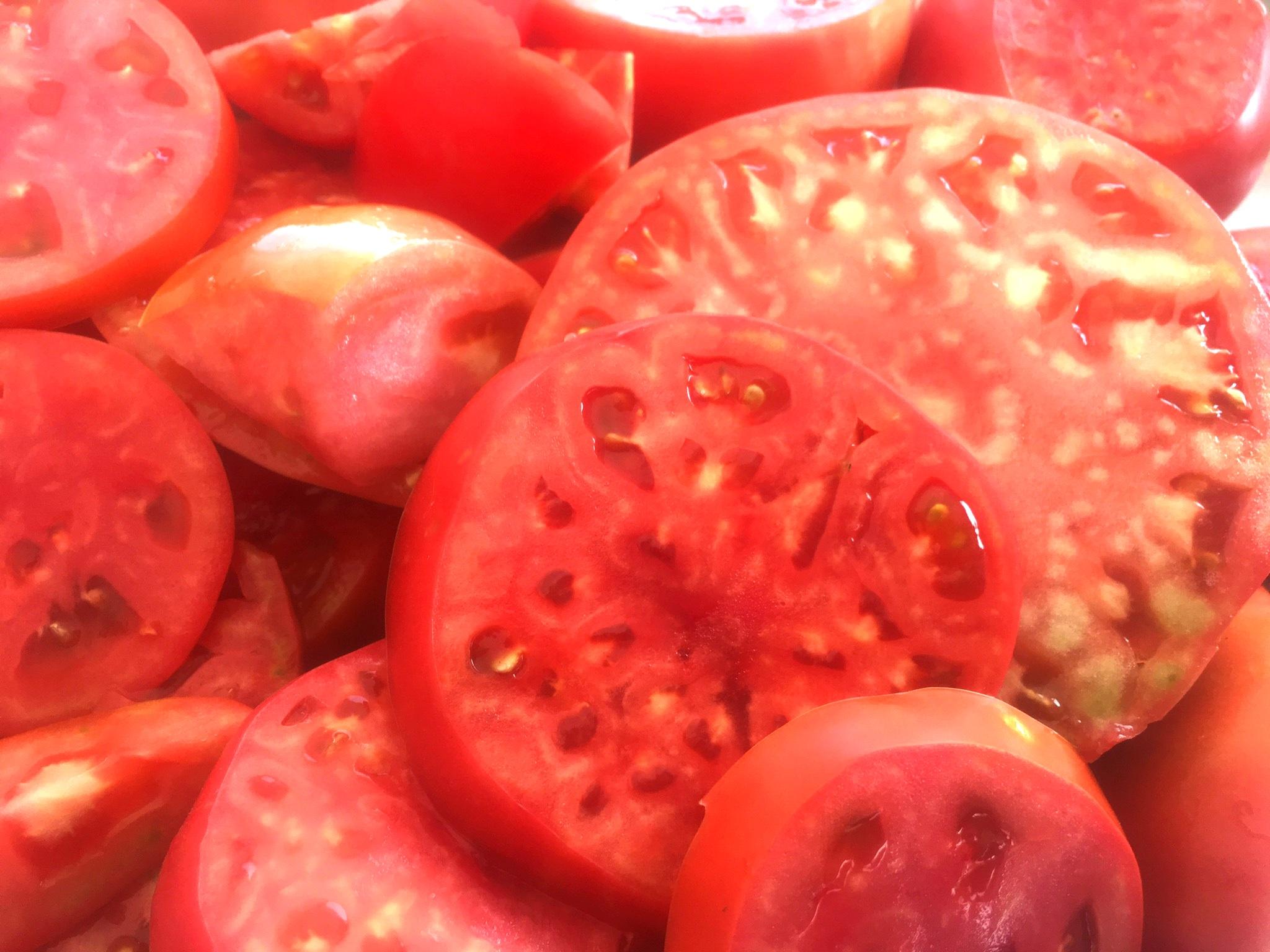 tomatopic.JPG