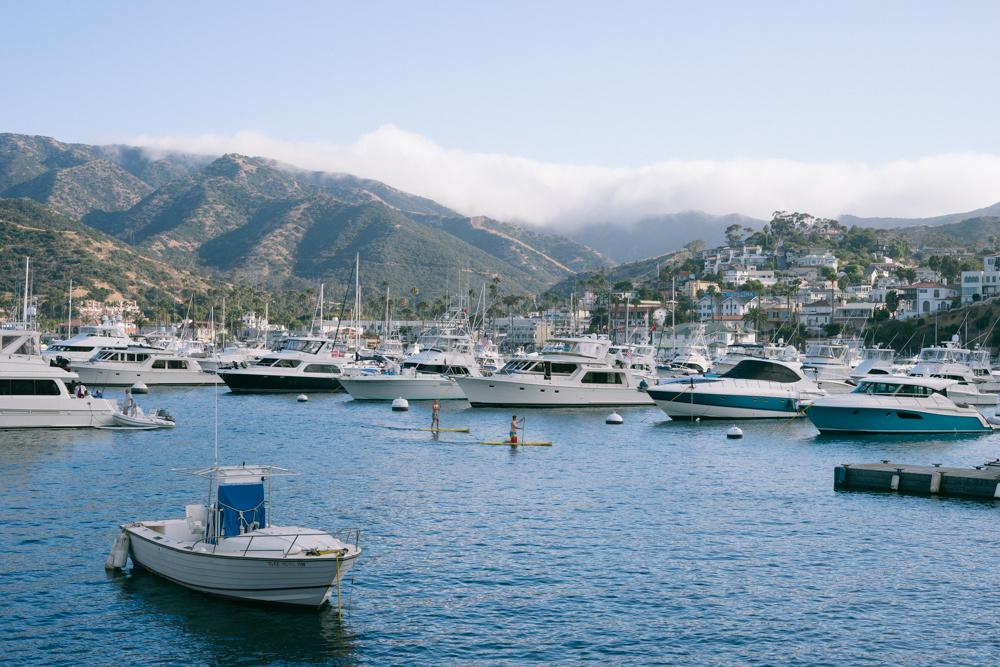 Avalon  Harbor, Catalina Island. Boats, paddle boarders and swimmers abound!
