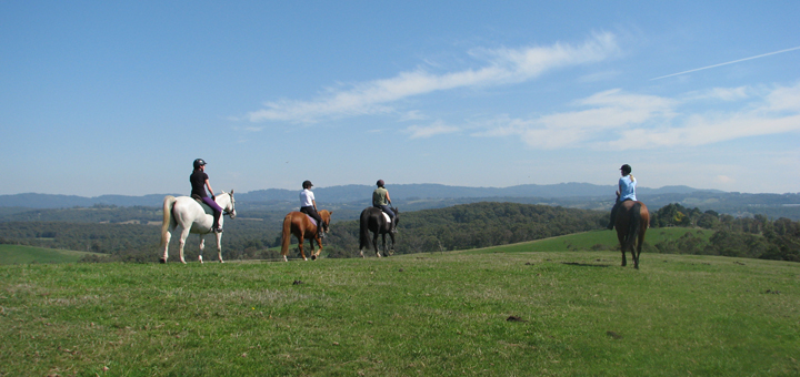 Ranges Equestrian Centre - Is situated on 50 acres of undulating countryside with spectacular views over the Yarra Valley and Dandenong Ranges.