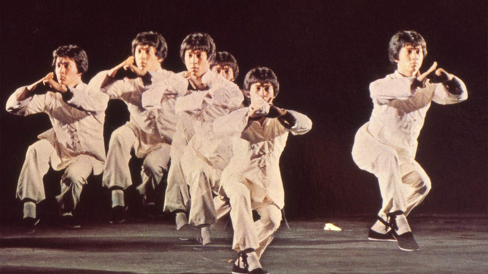 Shaolin-Wooden-Men-bild.jpg