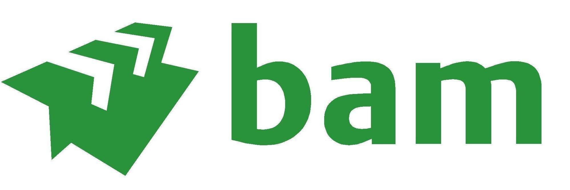 BAM-logo3.jpg