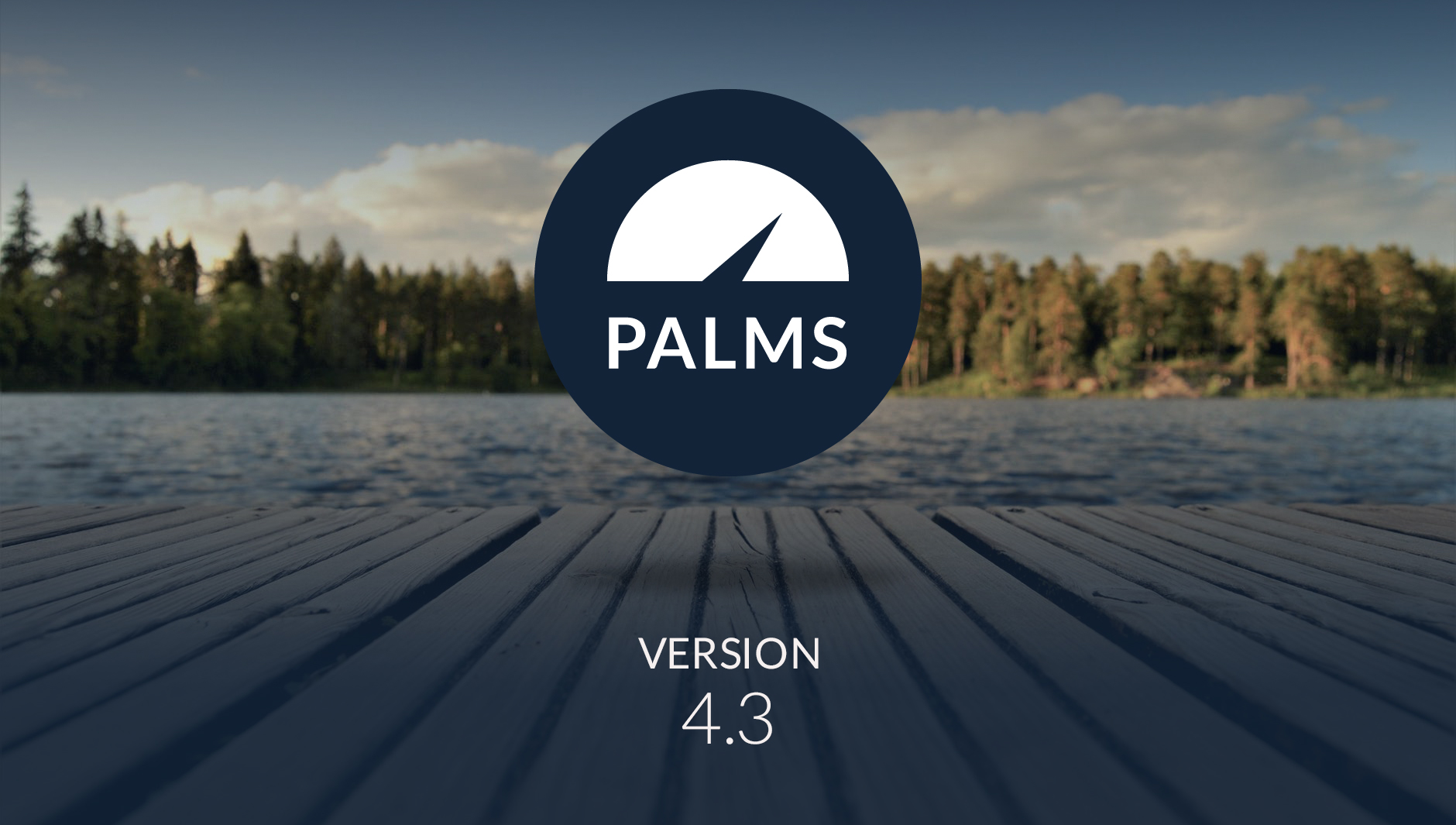 palms_43_comp.jpg