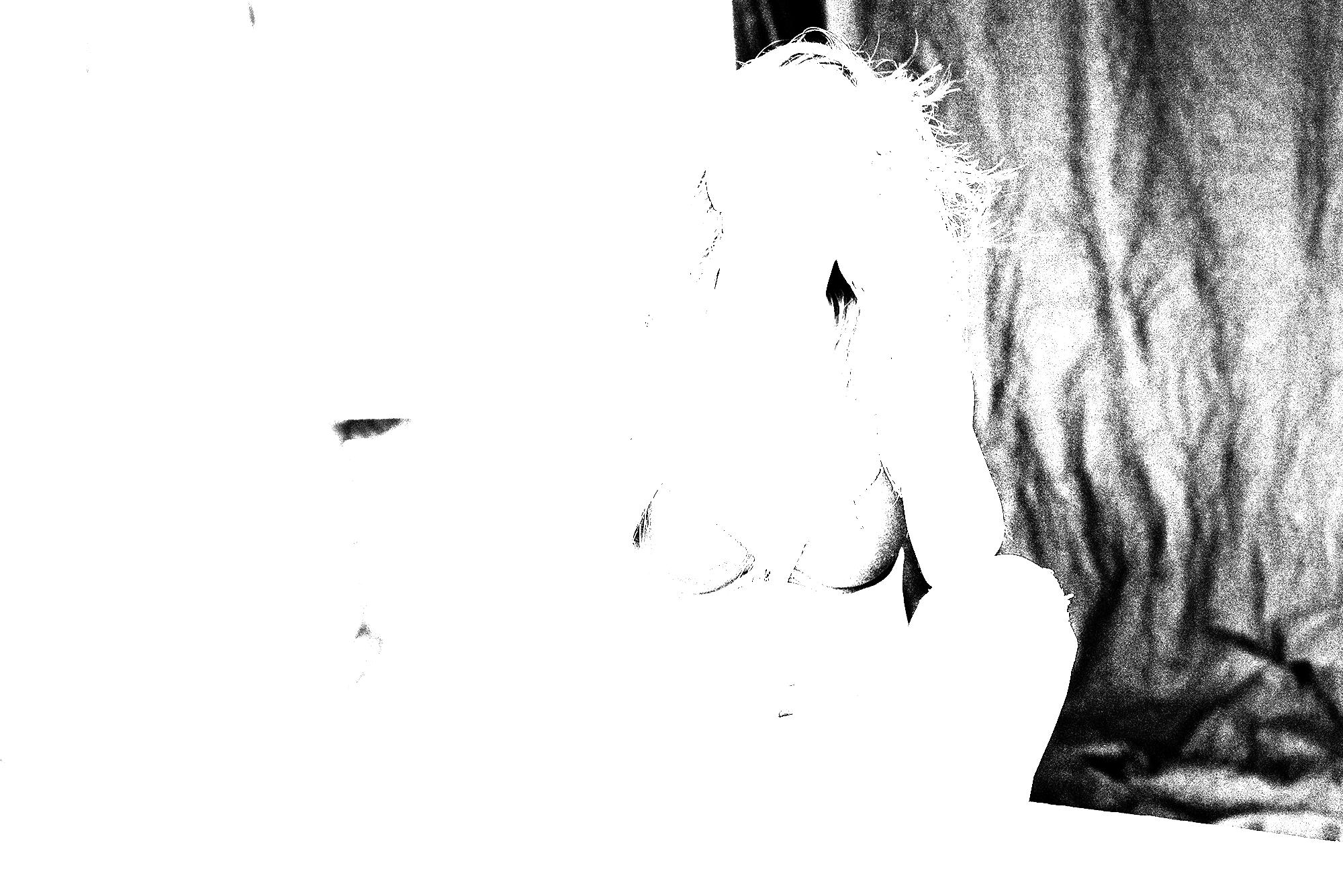 20161231-DSC_1439.png