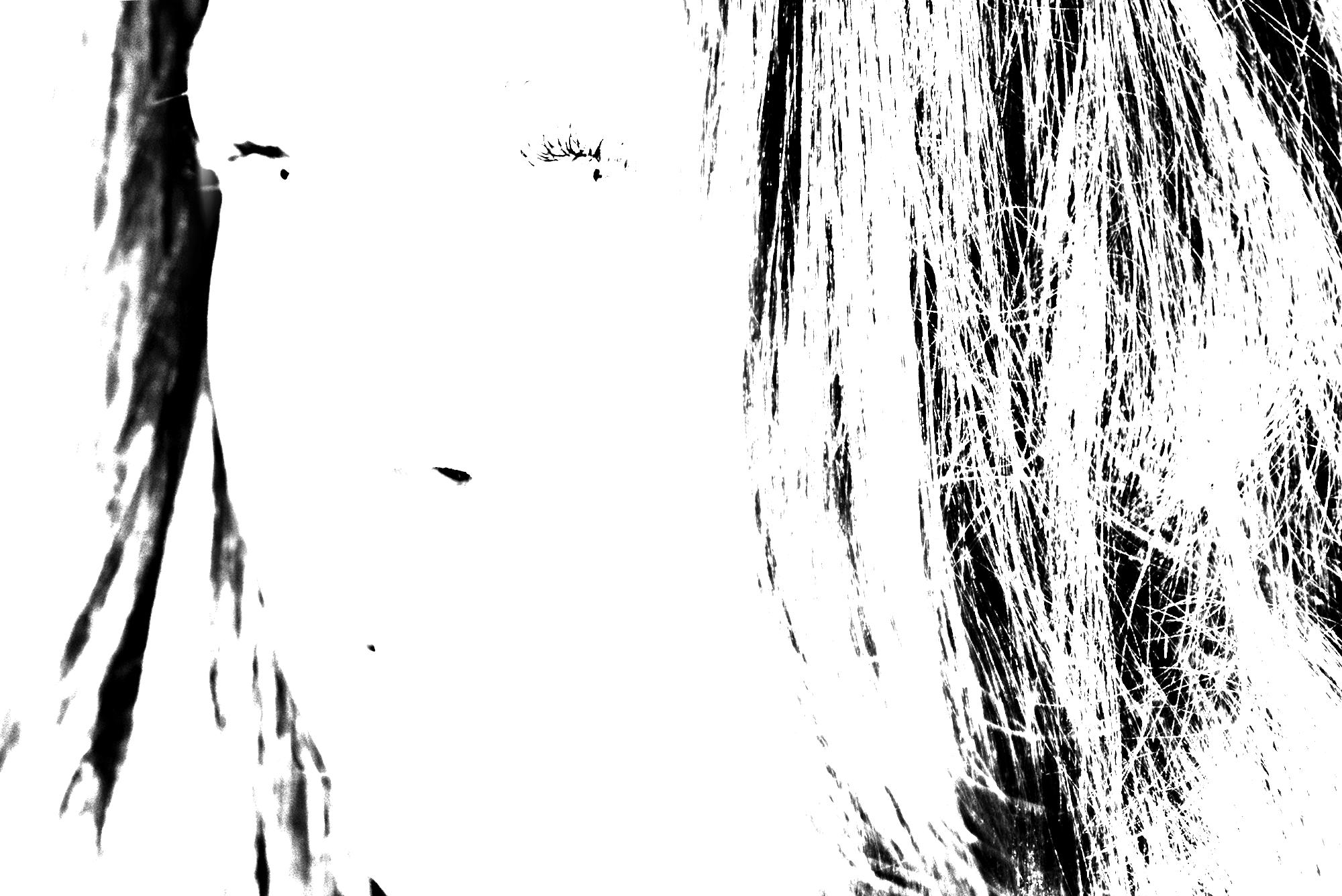 20161230-DSC_0978.png