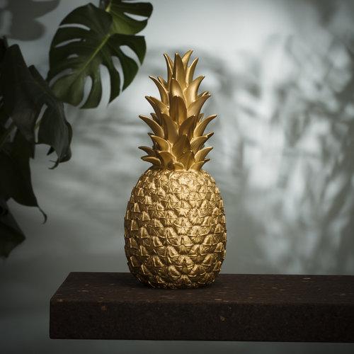 PineappleGolden_day-Editar.jpg