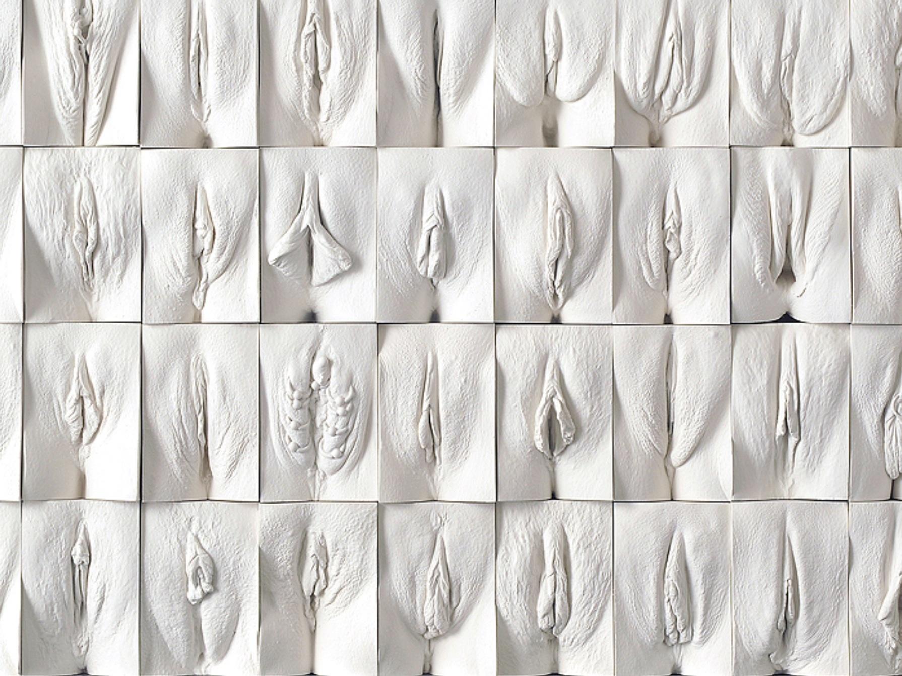 Jamie McCartney - Great Wall of Vagina (2014)