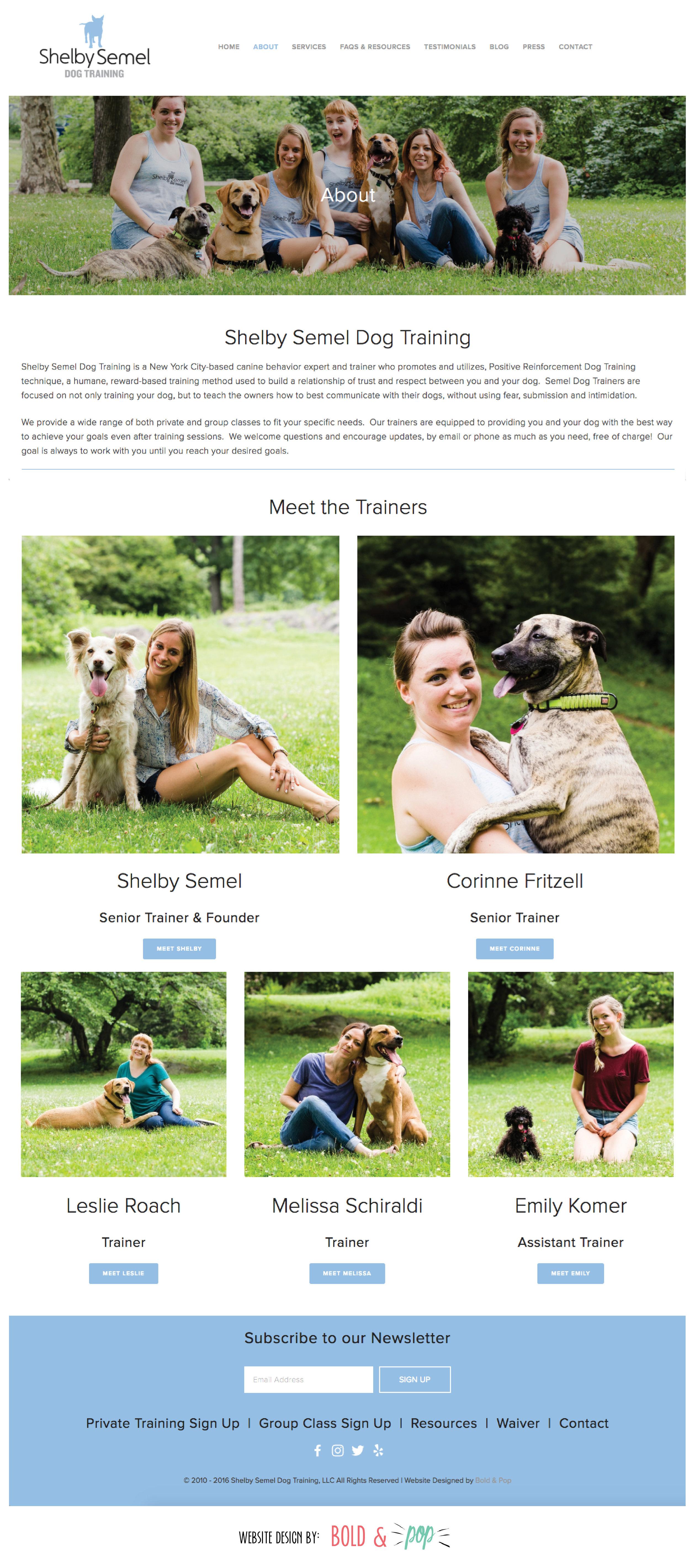 Bold & Pop : Shelby Semel Dog Training Website Design