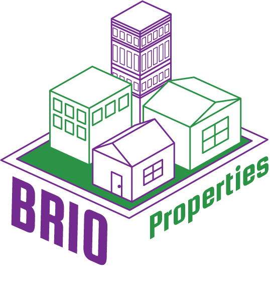Bold & Pop : #BoldBossTribe Feature with Brio Properties Founder Corina Eufinger