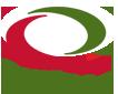 quiznos logo.png