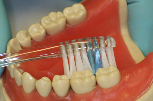 Oral Hygiene Instructions — Blackhart, Albertoni & Corso Dentistry