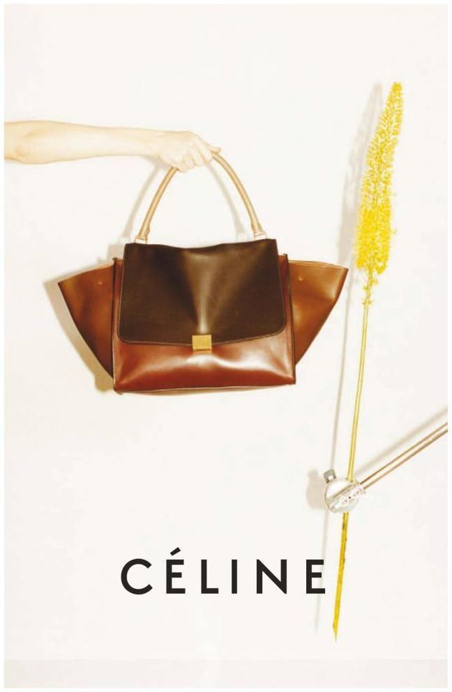 728f208e1a2b17e6cc8fd4e1d41da6ed--branded-bags-celine-bag.jpg