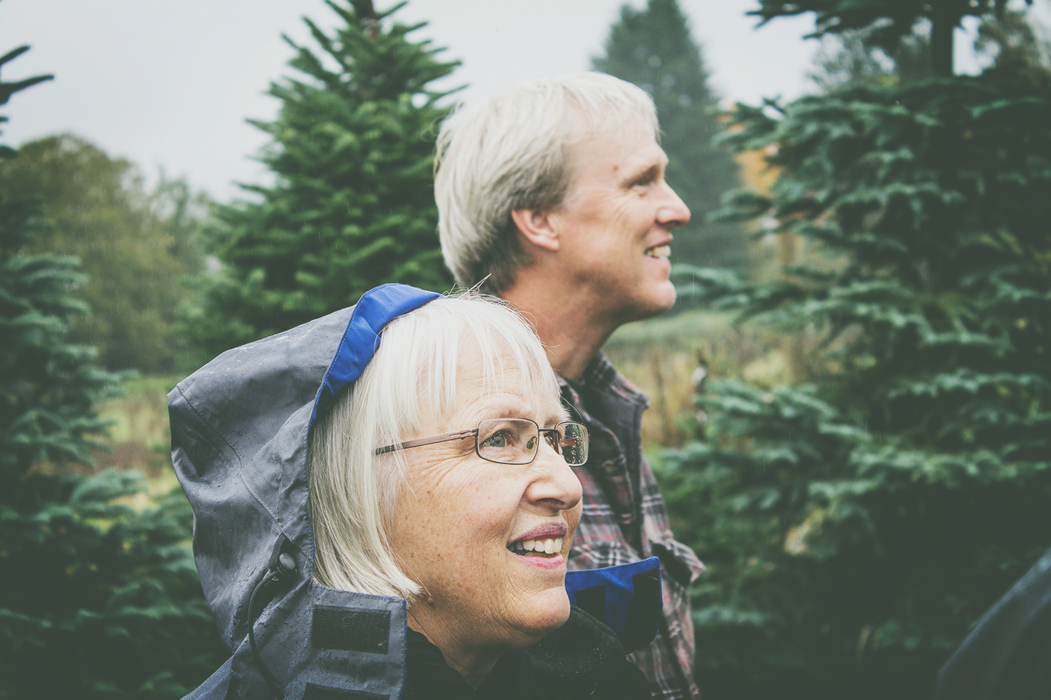 A family's love of trees