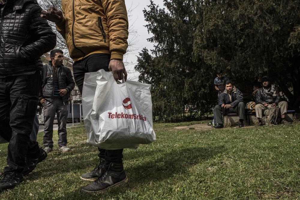 مجموعة من طالبي اللجوء الأفغان والباكستانيين الذين وصلوا للتو من مقدونيا يستريحون في حديقة في وسط سوبوتيتسا
