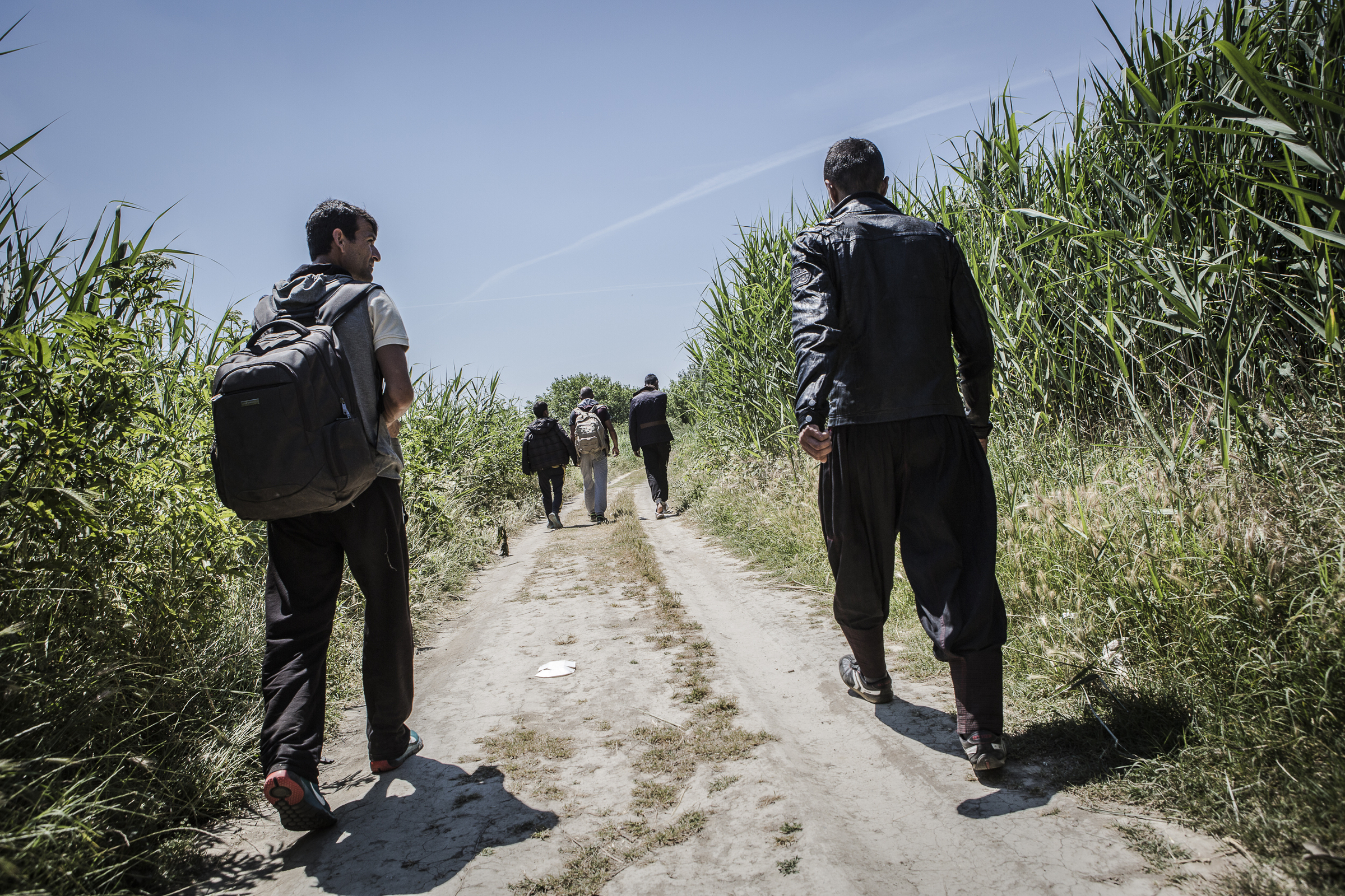 Afghan refugees walk through the no-man's-land between the Greek and Macedonian borders.