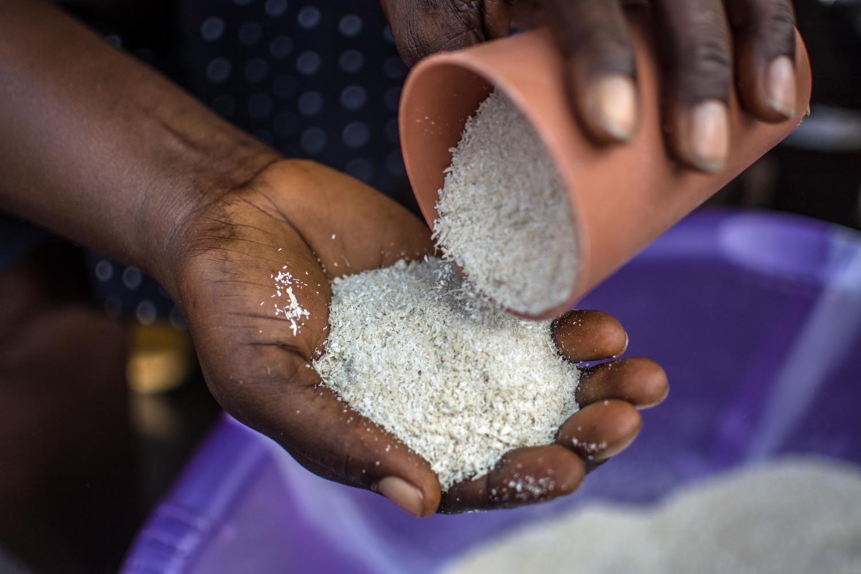 يقول التجار في سوق الكونغو في حي بروكفيلدز في فريتاون أن سعر الغاري المجفف قد ارتفع منذ أن ضرب فيروس الإيبولا البلاد، مما جعل البيع أكثر صعوبة ولم يعد الناس قادرين على تحمل النفقات.