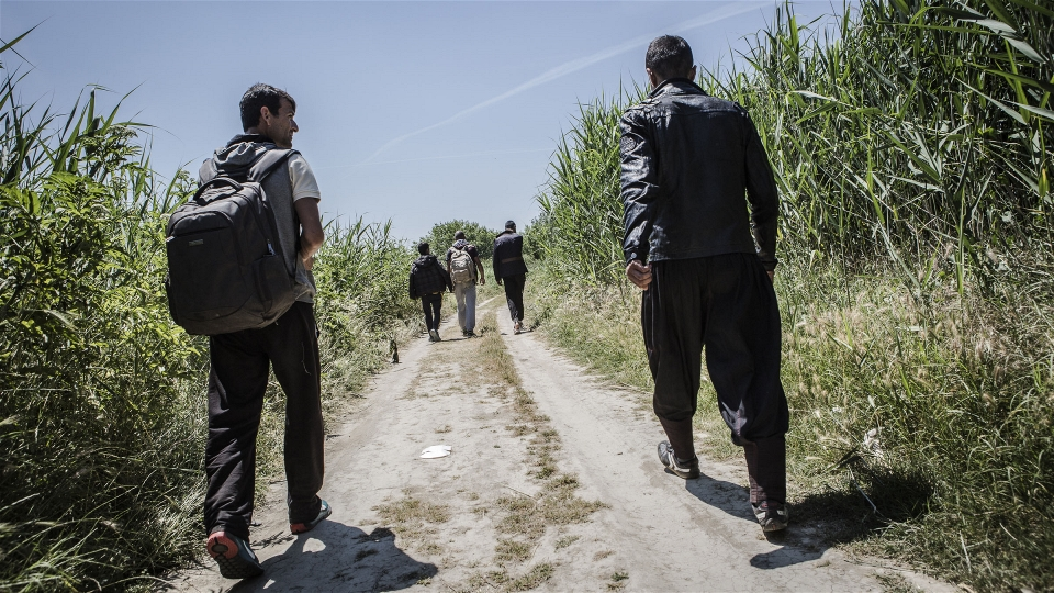 Migrants or refugees? That's the wrong question (Alberto Campi/IRIN)
