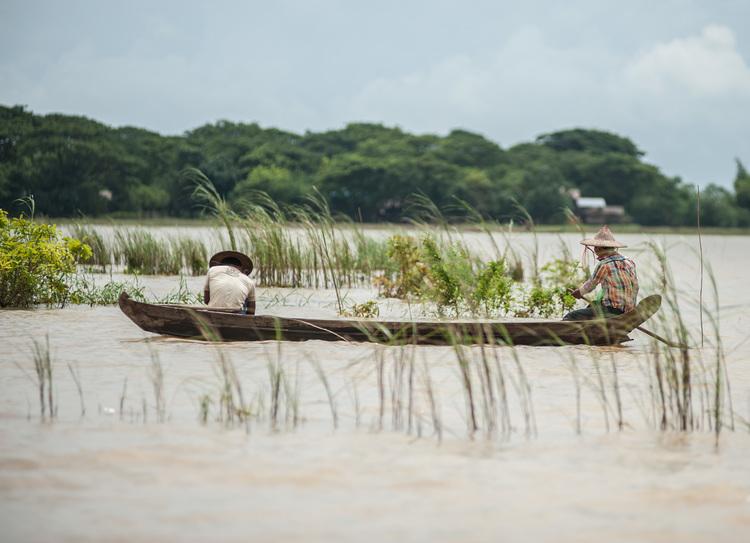 رجال يجدفون في زورق عبر حقول الأرز المغمورة بالمياه. وتشير تقارير منظمة الأغذية والزراعة إلى أن ما يقرب من مليون فدان من المحاصيل، معظمها من الأرز، قد فقدت بسبب الفيضانات