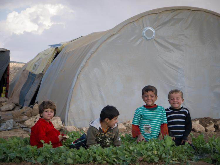 تقوم بعض الأسر بزراعة رقع صغيرة من الأرض بمحاصيل مثل الطماطم والبصل.