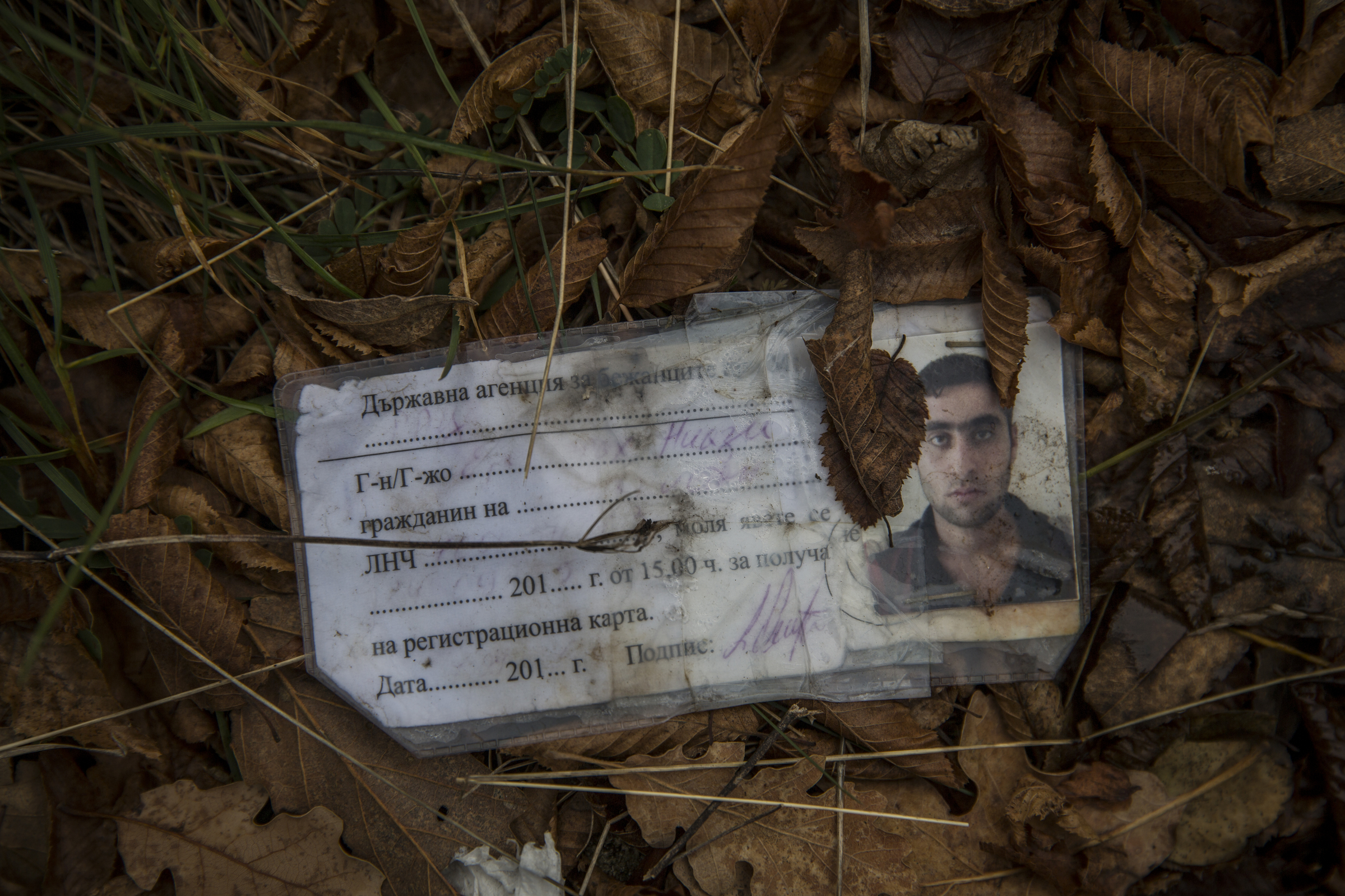 A Bulgarian identification document discarded on one of the paths through the forest that migrants use to cross into Serbia on their way to Western Europe (Jodi Hilton/IRIN)