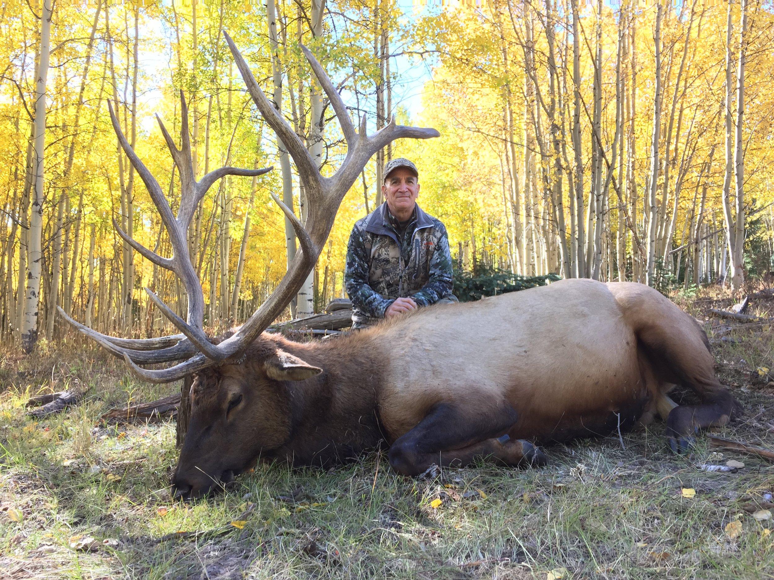 301-350 class elk hunts. $8,800 We have the heaviest -widest bulls in North America