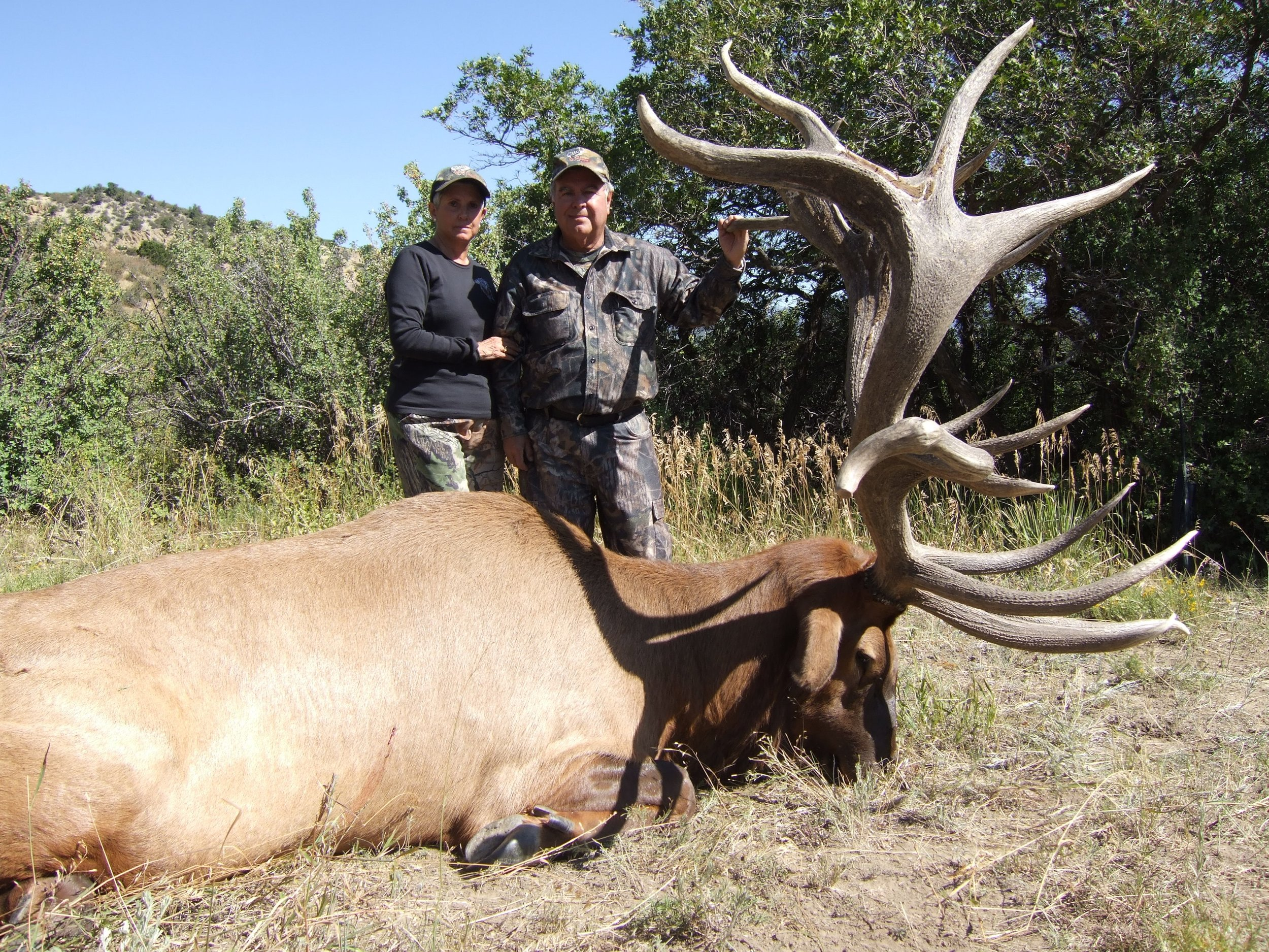 Arthur .G with a #1 world record SCI elk scoring 617