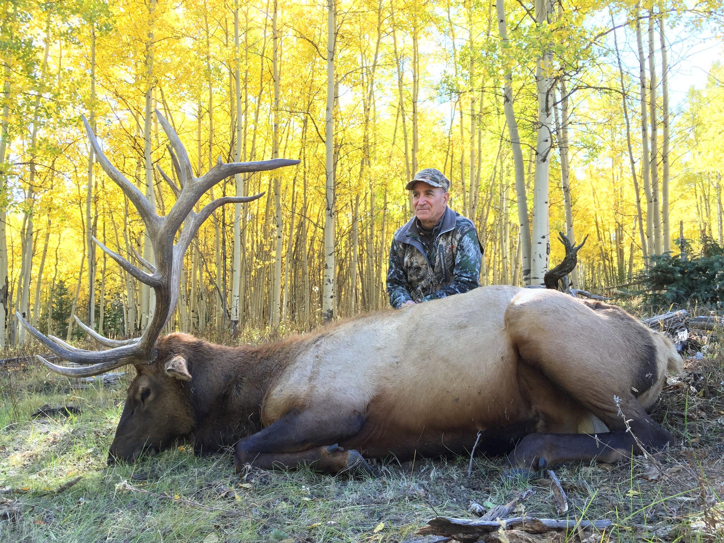 Colorado 2015 elk hunt